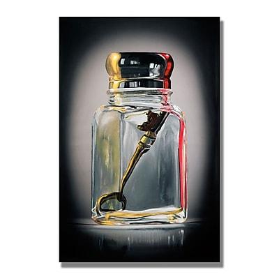 Trademark Fine Art 'Key Shaker' 30
