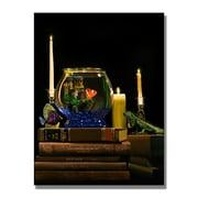 Trademark Fine Art 'Fishbowl'
