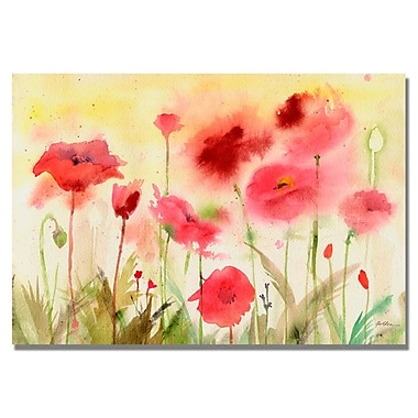 Trademark Fine Art 'Poppy Field' 30