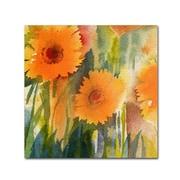 """Trademark Fine Art 'Orange Wild Flowers' 24"""" x 24"""" Canvas Art"""