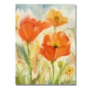 Trademark Fine Art 'Field of Poppies'