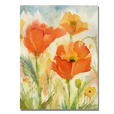 Trademark Fine Art 'Field of Poppies' 35