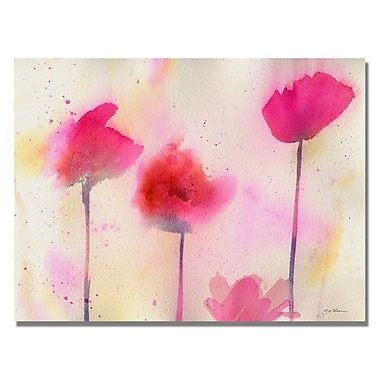 Trademark Fine Art 'Pink Poppy Dreams' 18