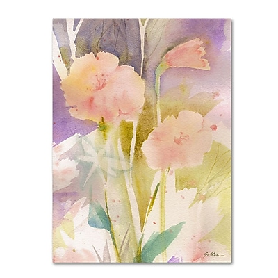 Trademark Fine Art 'Pink Dragonfly Shadows' 14