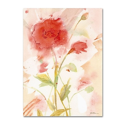 Trademark Fine Art 'Wild Rose' 14