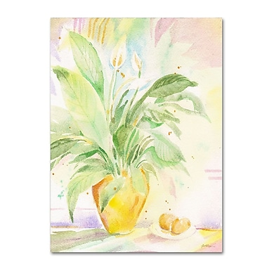 Trademark Fine Art 'The Peace Lily' 26