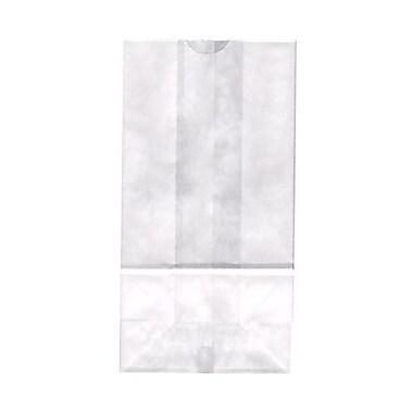 JAM Paper® Kraft Lunch Bags, Medium, 5 x 9.75 x 3, White, 500/Pack (691KRWHB)