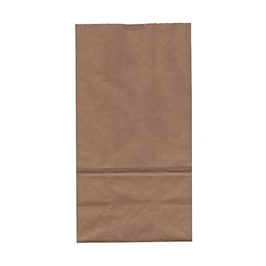 JAM Paper® Kraft Lunch Bags, Large, 6 x 11 x 3.75, Brown Kraft Recycled, 50/Pack (692KRbrg)