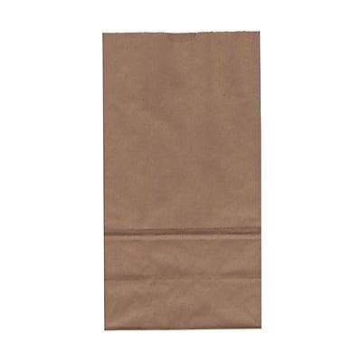JAM Paper® Kraft Lunch Bags, Large, 6 x 11 x 3.75, Brown Kraft Recycled, 500/box (692KRBRB)