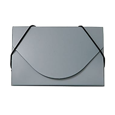 JAM Paper® Plastic Business Card Case, Silver Metallic, Sold Individually (365658)