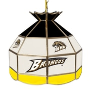"Trademark Global® 16"" Stained Glass Tiffany Lamp, Western Michigan U NCAA"