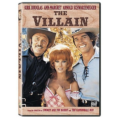 The Villain (DVD)