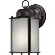 Aurora® 1 Light Outdoor Lantern W/Frosted Seeded Glass Shade, Antique Bronze