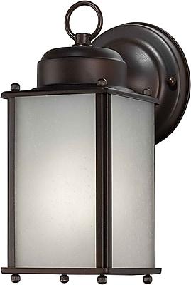 Aurora® 1 Light Outdoor Lantern W/Frosted Seeded Glass Shade, Antique Bronze