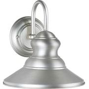 """Aurora® 9 1/2"""" x 9 1/4"""" 100 W 1 Light Outdoor Lantern, Brushed Nickel"""