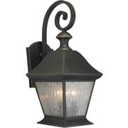 "Aurora® 20 1/4"" x 9"" 60 W 3 Light Outdoor Lantern W/Clear Seeded Glass Shade, Royal Bronze"
