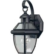 "Aurora® 12"" x 7"" 100 W 1 Light Outdoor Lantern W/Clear Beveled Glass Shade, Black"