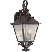 """Aurora® 21"""" x 9 1/2"""" 60 W 3 Light Outdoor Lantern W/Clear Seeded Glass Shade, Antique Bronze"""