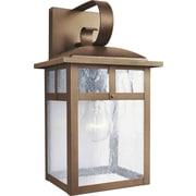"Aurora® 13 1/2"" x 7"" 100 W 1 Light Outdoor Lantern W/Clear Seeded Glass Shade, Rustic Sienna"