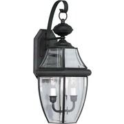 "Aurora® 21"" x 10"" 60 W 2 Light Outdoor Lantern W/Clear Beveled Glass Shade, Black"