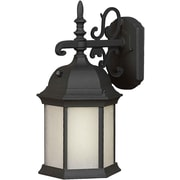 "Aurora® 16"" x 8"" 1 Light Outdoor Lantern W/Frosted Seeded Glass Shade and 9 1/4"" EXT, Black"
