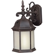 "Aurora® 16"" x 8"" 1 Light Outdoor Lantern W/Frosted Seeded Glass Shade and 9 1/4"" EXT, Painted Rust"