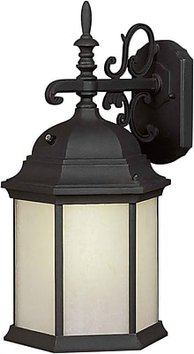 Aurora® 1 Light Outdoor Lantern W/Frosted Seeded Glass Shade, Black