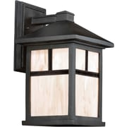 "Aurora® 14"" x 8"" 100 W 1 Light Outdoor Lantern W/Honey Glass Shade, Black"