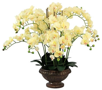 Laura Ashley® Lifelike Silk Orchid Arrangement with Planter