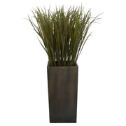 "Laura Ashley 48"" Grass Floor Plant in Contemporary Stand"