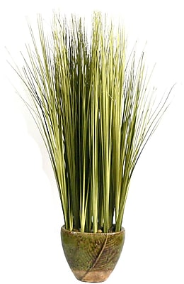 Laura Ashley® Onion Grass in a Ceramic Planter