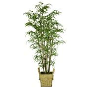 "Laura Ashley 72"" Realistic Silk Bamboo Tree in Wicker Basket Planter"