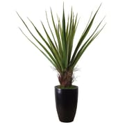 """Laura Ashley 60"""" High End Realistic Silk Giant Agave Plant in Contemporary Planter"""
