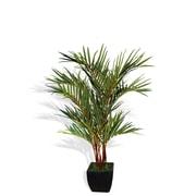 "Laura Ashley 72"" Lipstick Palm Tree in Fiberstone Container"