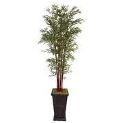 "Laura Ashley 111"" Harvest Bamboo Trees in 16"" Fiberstone Planter"
