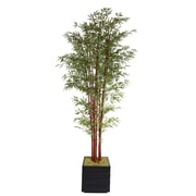"Laura Ashley 98"" Harvest Bamboo Trees in 14"" Fiberstone Planter"