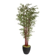 "Laura Ashley 98"" Harvest Bamboo Trees in 16"" Fiberstone Planter"