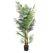 "Laura Ashley 76"" Areca Palm Tree"