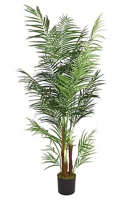"""Laura Ashley 76"""" Areca Palm Tree"""