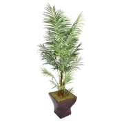 "Laura Ashley 86"" Areca Palm Tree in 17"" Fiberstone Planter"