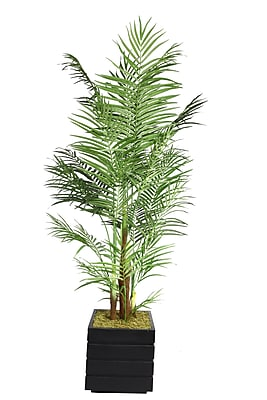 "Laura Ashley 82"" Areca Palm Tree in 14"" Fiberstone Planter, Black/Gray"
