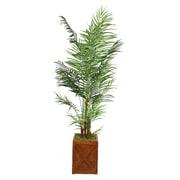 "Laura Ashley 85"" Areca Palm Tree in 13"" Fiberstone Planter"
