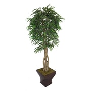 "Laura Ashley 88"" Willow Ficus Tree With Multiple Trunks in 17"" Fiberstone Planter"