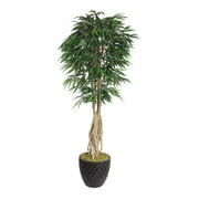 """Laura Ashley 84"""" Willow Ficus Tree With Multiple Trunks in 16"""" Fiberstone Planter, Black"""