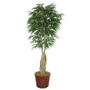 """Laura Ashley 83"""" Willow Ficus Tree With Multiple Trunks in 17"""" Fiberstone Planter"""