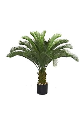 """Laura Ashley 48"""" Cycas Palm Tree"""