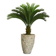 "Laura Ashley 62"" Cycas Palm Tree in 16"" Fiberstone Planter"