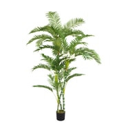 "Laura Ashley 72"" Palm Tree"