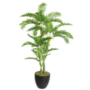"Laura Ashley 78"" Palm Trees in 16"" Fiberstone Planter"