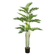 "Laura Ashley 68"" Palm Tree"